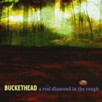 Buckethead - A Real Diamond in the Rough