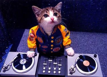 Betatester del DJ Hero
