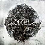 Scar Symmetry – Dark Matter Dimensions