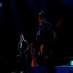 Metallica (12)