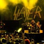 209 - Slayer (19)